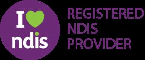 ndis-1024x423-300x124